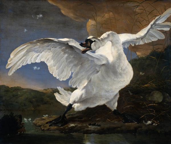 jan_asselijn_-_the_threatened_swan-resized-600